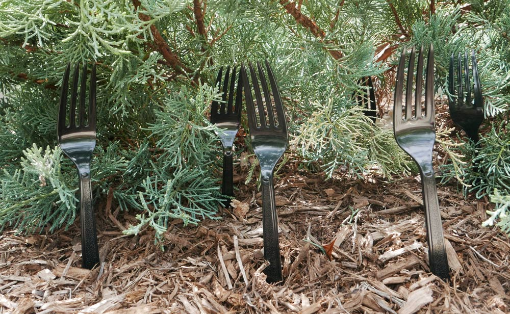 how to keep cats out of the garden. Repel Cats From Your Yard With Black Forks How To Keep Out Of The Garden