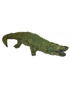 Alligator Topiary