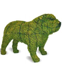 Bulldog Topiary
