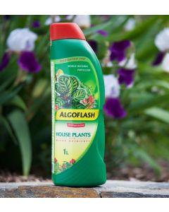 Algoflash Liquid Concentrate House Plant Fertilizer