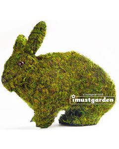 Rabbit Running Topiary