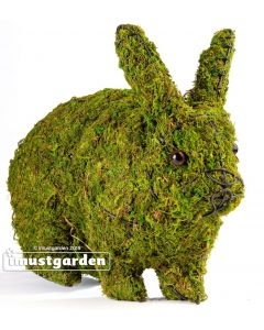 "Rabbit Hopping 13"" Topiary"