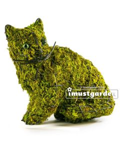 Sitting Kitty Topiary