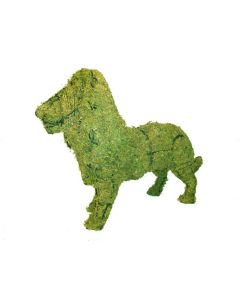 Lion Topiary