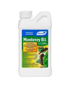 Monterey B.t., 16oz