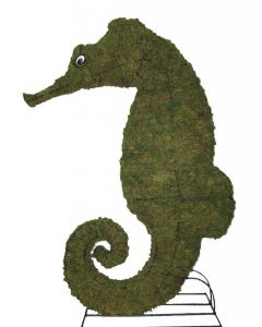 Seahorse Topiary
