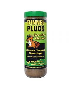 Tunnel Plugs