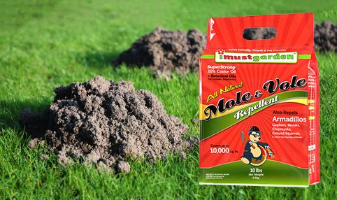Mole Vole Repellent Get rid of Moles Voles Keep Moles