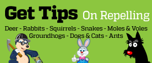 tips on repelling animals