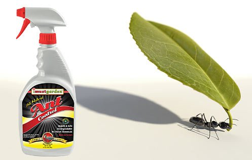 natural ant control safe for use around your home and pets