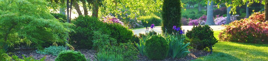 protect your yard with I Must Garden