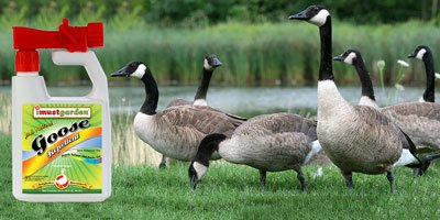 natural goose repellent safe for use around your home and pets