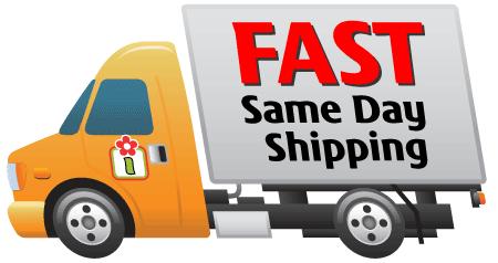 We ship fast